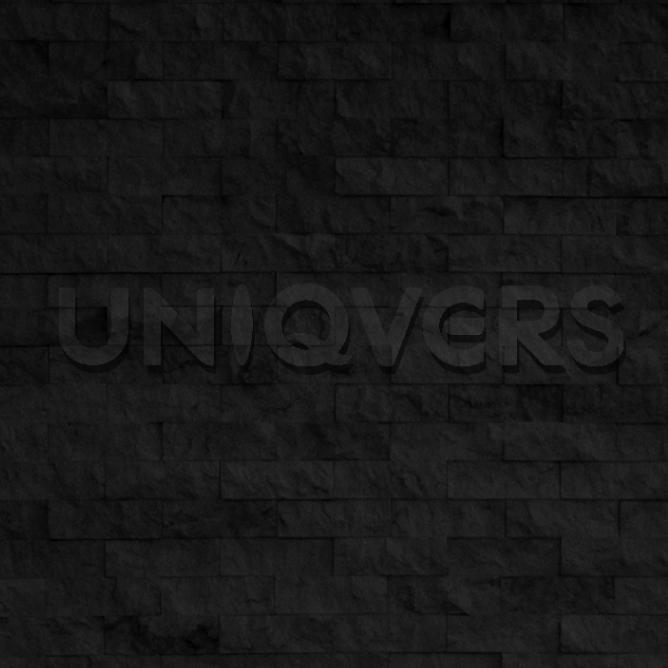 UNIQVERS